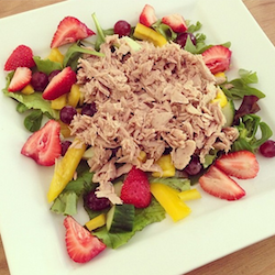Instagram Just Fit Foods salade met tonijn