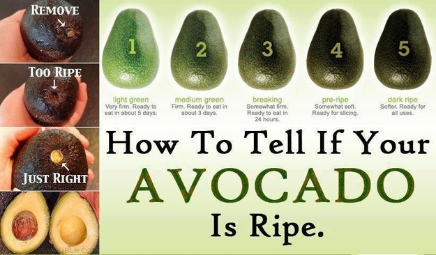 Is je avocado al rijp? | Feel Magazine