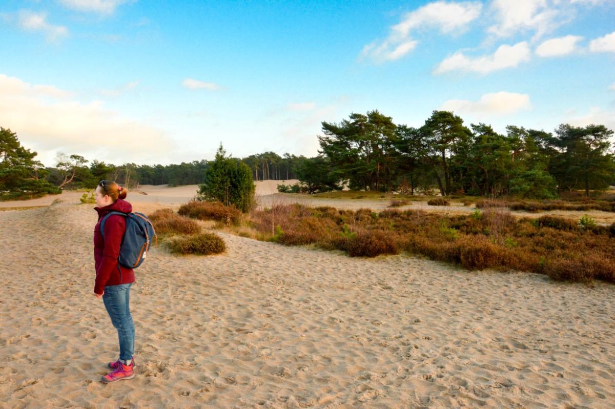 Keen Terradora in het zand